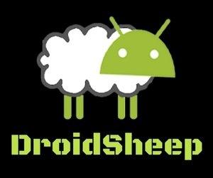 DroidSheep-Apk